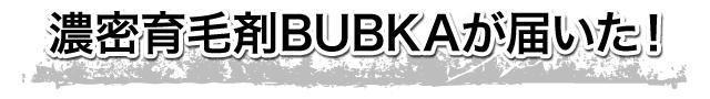 濃密育毛剤BUBKAが届いた!